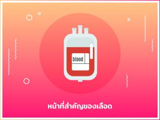 เลือดจระเข้_330x248_2